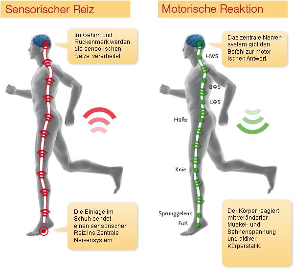 Sensomotorischen Einlage aktivieren über die Sensoren der Füße